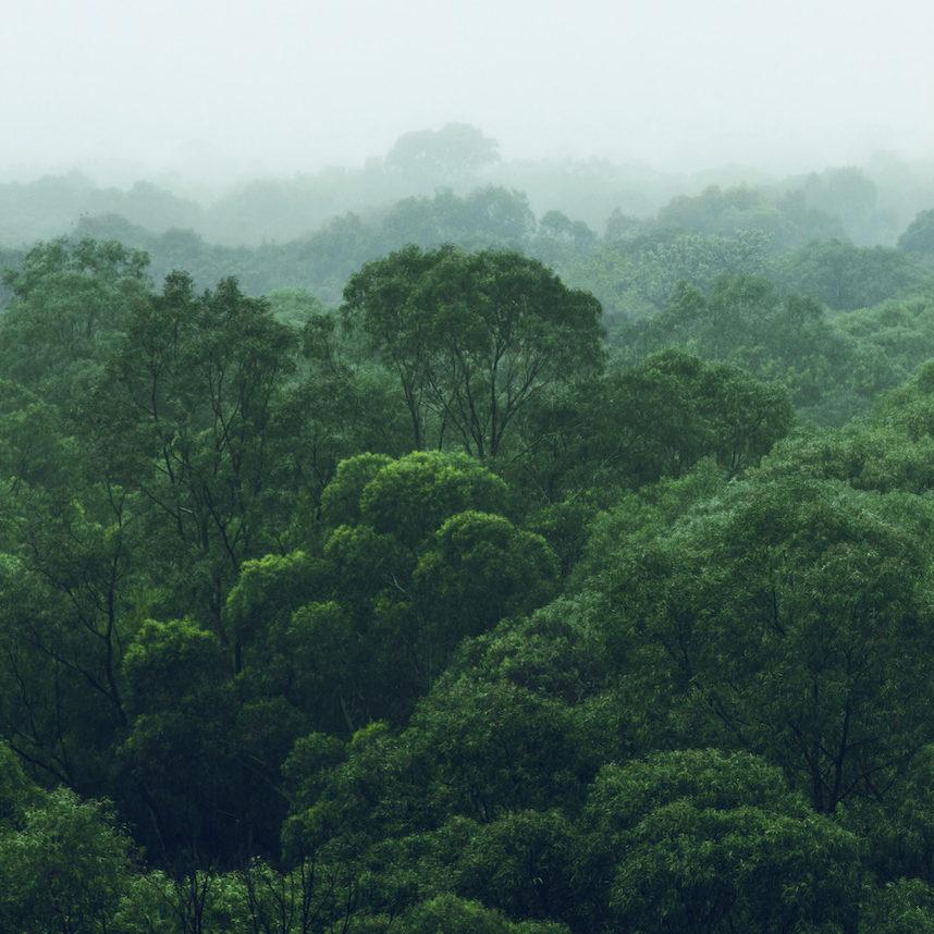 responsabilidad_medioambiental