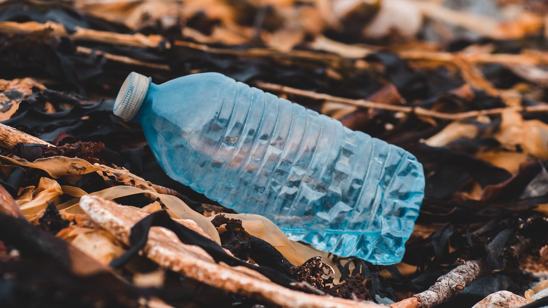 ¿Crees que para limpiar una playa solo basta con recoger el plástico?