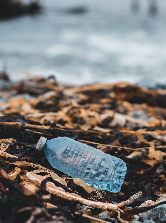 Las playas necesitan un cambio en la sociedad