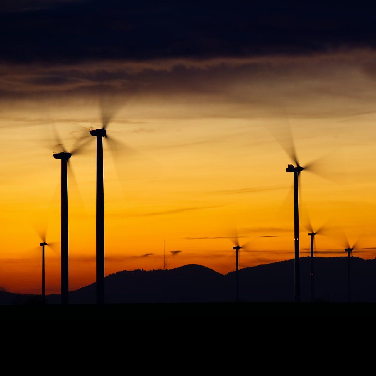 Ser neutrales en huella de carbono para 2025 -nuestro principal objetivo